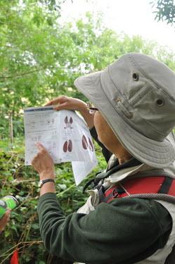 Volunteer demonstrating how to identify small mammal tracks Volunteer,survey,tracks,identify,identification