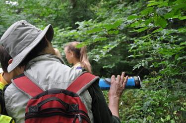 Volunteer checking tunnel for small mammal footprints at BioBlitz survey Volunteer,survey,tracks,identify,identification