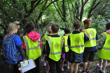 Children taking part in BioBlitz survey Children,nature,BioBlitz,survey