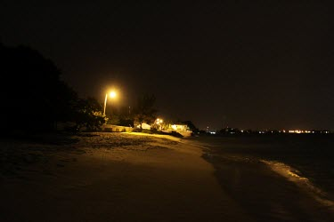 Artificial light on a green turtle nesting beach Threats to existence,Chordates,Chordata,Reptilia,Reptiles,Turtles,Testudines,Sea Turtles,Cheloniidae,Atlantic,mydas,Aquatic,Appendix I,Coastal,Herbivorous,Animalia,Endangered,Chelonia,Pacific,Terrestr