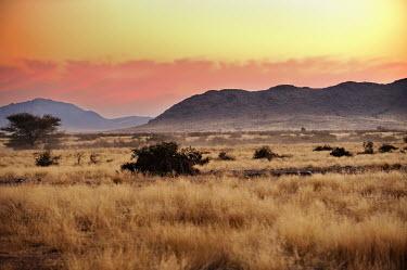Kalahari Desert africa,namibia,Kalahari,Desert,deserto