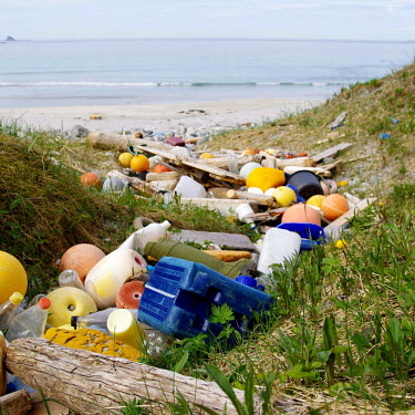 This river of litter was formed by the tide accumulating beach litter in a little creek beach,coast,norge,shoreline,pentax,litter,plastic,beach clean-up,bottles,plastic bottles,environmental issues,marine litter,plastic litter,plastic pollution,conservation issue