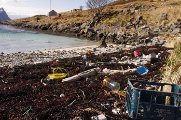 Even the remotest coastlines get marine litter washing up on the coast trash,coast,litter,plastic,coastline,beach clean-up,environmental issues,marine debris,marine litter,plastic pollution,plastic crate,wire,strand line,seaweed,shore