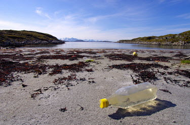 Bottles and floats littering beach marine,plastic,coastlines,marine debris,plastic waste,marine litter,plastic litter,seaweed,low down,sunny,blue sky,beach,coastal