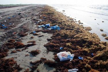 Litter on the beach pollution,marine pollution,plastics,plastic bottles,cans,strand line,trash,rubbish,sargassum,shore,beach,shoreline