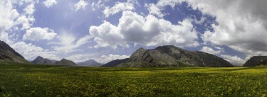 Lar National Park, Tehtan, Iran National park,protected area,panoramic,mountains,landscapes,landscape,flowers,sky,cloud,clouds,yellow