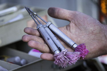 Tranquilizer darts for black rhino Africa,Conservation,rhino,rhinos,black rhino,black rhinos,black rhinoceros,Diceros bicornis,mammal,mammals,translocate,translocation,capture,captive,people,protected area,release,protect,protected,tra