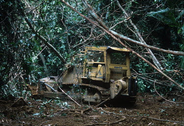 Conservation Issues: a bulldozer clears trees and vegetation to build a road into logging concession areas Africa,Conservation,issue,issues,conservation issues,conservation issue,threat,threatened,logging,logged,log,logs,rainforest,rainforests,forest,forests,export,cut,timber,tree,trees,trunk,trunks,people