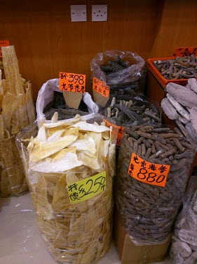 Shark fins for sale in medicine shop China,Chinese medicine,Traditional Chinese Medicine,medicine,medicine shop,illegal,illicit,illegal wildlife trade,wildlife trade,poaching,poached,dead,endangered species,threats,conservation threat,un