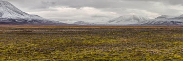 Svalbard landscape Arctic,Autumn,snow,snowline,Svalbard,mountains,valley,Snow,Snowline