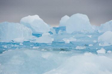 Sea ice Svalbard,sea,ice,sea ice,blue,abstract,cold,shallow focus,lumps,Arctic,Ice,Winter