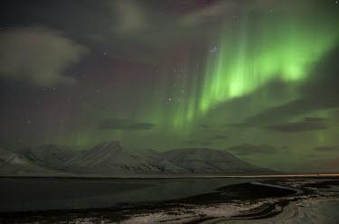 Northern lights Svalbard,northern lights,lights,sky,night,dark,stars,black,green,striking,diagonal,landscape,mountains,night sky,snow