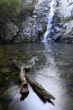 Waterfall waterfall,water,peaceful,habitat,landscape,rocks,rocky,pool,branches,wood