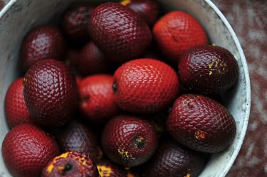 Amazon wild fruits Brazil,latin america,fruit,fruits,horizontal,amazon,spanish,forest,forests,rainforest,rainforests,wild,red,shiny,bowl,picked,palm,it� palm,ita,buriti,muriti,canangucho,aguaje,Moriche palm fruit,Planta