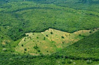 Aerial view of the Amazon rainforest and river, near Manaus Brazil,latin america,horizontal,forest,amazon,aerial,spanish,forests,climate change,global warming,rainforest,rainforests,deforestation,degradation,degraded,cleared,clearing,field,green,erosion,brazil
