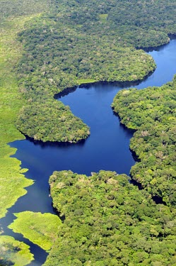 Aerial view of the Amazon rainforest and river, near Manaus brazil,latin america,river,amazon,rainforest,aerial,spanish,forest,forests,climate change,global warming,verticals,rainforests,diagonal,contrast,water,green,blue,rivers,looking down,sunny,abstract,for