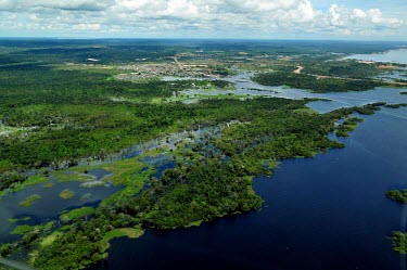Aerial view of the Amazon rainforest and river, near Manaus brazil,latin america,horizontal,forest,river,amazon,aerial,spanish,forests,climate change,global warming,rainforests,rainforest,habitat,water,wetlands,urbanisation,destruction,deforestation,infrastruc