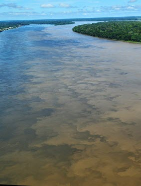 Aerial view of the Amazon rainforest and river, near Manaus brazil,latin america,river,amazon,spanish,forest,forests,climate change,global warming,verticals,rainforests,rainforest,water,mixing,tributaries,muddy,sediment