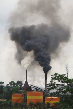 Crude palm oil (CPO) plant in Jambi, Indonesia indonesia,forests,climate change,global warming,verticals,rainforests,jambi,cpo factory,crude palm oil,cpo,crude,smoke,pollution,chimneys,chimney,black,factory,processing plant