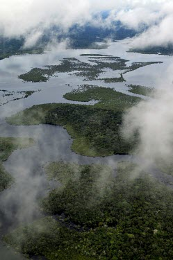 Aerial view of the Amazon rainforest and river, near Manaus brazil,latin america,forest,rainforest,amazon,aerial,spanish,forests,climate change,global warming,verticals,rainforests,water,wetlands,clouds
