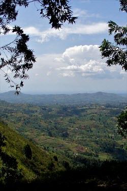 Landscape of Uganda africa,landscape,Uganda,forests,climate change,global warming,verticals,rainforests,degraded,framed,agricultural,uganda
