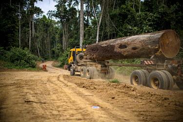 Wood Truck for the Company Fabrique Camerounaise africa,road,horizontal,truck,landscape,logs,transportation,land,congo,climate change,lumber,cameroon,ngon,ebolowa,wood,log,logging,trunk,timber,huge,big,deforestation
