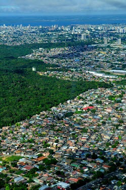 Aerial view of Manaus city,houses,brazil,building,buildings,forest,amazon,rainforest,view,forestry,center,aerial,spanish,international,research,redd,manaus,verticals,urban areas