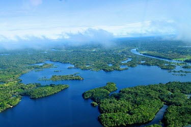 Aerial view of the Amazon Rainforest brazil,forest,river,amazon,rainforest,view,forestry,center,aerial,spanish,international,research,redd,forests,wetlands,green,blue
