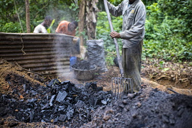 Charcoal burner and his assistant cooling the charcoal africa,people,man,horizontal,forest,equipment,burn,charcoal,environment,forests,climate change,global warming,cameroon,work,production,cooling,shallow focus,action,threat,fork,deforestation