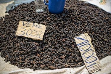 Bushmeat (earthworm) africa,market,congo,drc,earthworm,caterpillars,larvae,livelihoods,democratic republic of congo,bushmeat,bush meat,lukolela,stall,for sale
