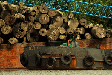 A barge transporting logs in Central Kalimantan wood,people,man,Indonesia,boats,boat,barge,logs,redd,water,transportation,central kalimantan,timber
