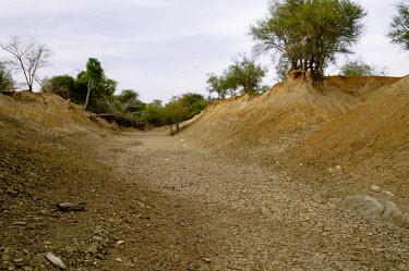 A tributary of the Nouhou river dried up due to the low water level road,trees,river,tributary,Africa,horizontal,dry,climate change,cracked,Burkina Faso,Boromo,Nouhou River,mud,riverbed,low,water,levels,dried,CIFOR,forest research,adaptation,production forests