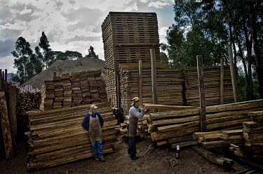 Workers in a timber yard that sells wood from the Amazon wood,people,man,male,men,horizontal,Quito,Ecuador,workers,woods,timber,spanish,climate change,deforestation,horizontals,wood products,lumber,yard,timber yard