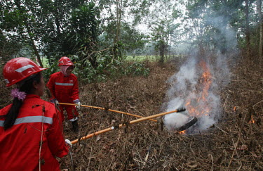 Practicing using equipment to put out flames during a fire drill people,horizontal,women,central,environment,practice,activity,redd,forests,global warming,kalimantan,community involvement,equipment,safety,fire,forest fire,putting out,fire drill