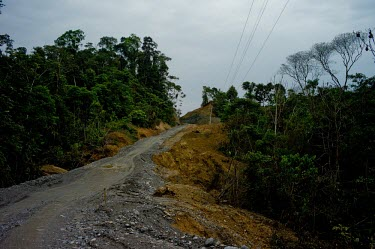 A road under construction near Misahualli new,road,construction,trees,horizontal,Ecuador,Spanish,napo,climate change,deforestation,horizontals,misahualli