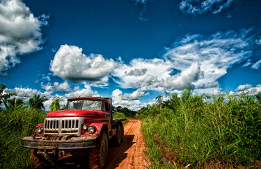 Truck on the road to a Brazil nut concession road,Brazil,tree,Peru,horizontal,forest,truck,puerto,amazon,rainforest,scenery,spanish,land,environment,per,climate change,madre,concession,maldonado,nuez,brasilera,madre de dios,blue sky,Brazil nut,r