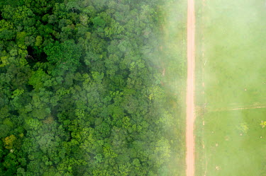A bird's eye view of the stark contrast between the forest and agricultural landscapes near Rio Branco road,rainforest,rainforests,logging,pasture,climate change,cattle farming,Brazil,Latin America,aerial,spanish,acre,deforestation,contrast,forest,forests,agricultural,agriculture,landscapes,landscape,g
