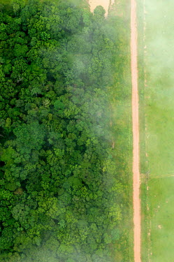 A bird's eye view shows the contrast between forest and agricultural landscapes road,rainforest,rainforests,logging,pasture,climate change,cattle farming,Brazil,Latin America,aerial,spanish,acre,deforestation,contrast,forest,forests,agricultural,agriculture,landscapes,landscape,g