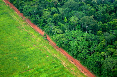 An aerial shot shows the contrast between forest and agricultural landscapes road,horizontal,rainforest,rainforests,logging,pasture,climate change,horizontals,cattle farming,Brazil,Latin America,aerial,spanish,acre,deforestation,contrast,forest,forests,agricultural,agriculture