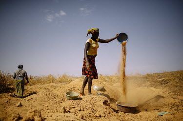 Miner panning for gold africa,man,gold,mine,burkina faso,mining,deforestation,human,humanitarian,issues,conservation issues,gold mine,people,human issues,CIFOR,Burkina Faso,forest research,climate change,adaptation,producti