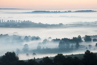 Dawn mist over mixed woodland, Ashdown Forest, Sussex, England dawn,mist,misty,sunrise,morning,fog,foggy,cloud,clouds,weather,climate,woods,woodland,fields,farmland,UK,England,Sussex,forest,forests,horizon,atmosphere,atmospheric
