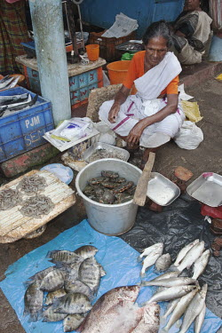 Indian woman cleaning and de-scaling various types of fresh fish for sale fish market,fish,market,for sale,sale,crabs,crab,fishing,overfishing,prawns,shrimp,human,people,Abundance,Freshness,Choice,Preparation