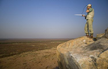 A researcher standing on a hill top while tracking African wild dogs using radio telemetry savannah,savanna,Africa,conservation,monitoring,tracks,tracking,radio tracking,warden,human,African wild dog,Lycaon pictus,Carnivores,Carnivora,Mammalia,Mammals,Chordates,Chordata,Dog, Coyote, Wolf, F