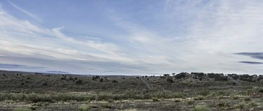Panorama of a soft release enclosure in Extremadura landscape,scenery,panoramic,sky,blue sky,scrubland,scrub,arid,dry,habitat,cage,enclosure,project,captive breeding,Iberian lynx,lynx,release,soft release