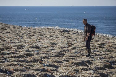 Volunteers look on at the littered coast of Grassholm island human impact,pollution,ghost fishing,entangled,discard,rubbish,waste,threat,environmental threats,environmental threat,wildlife threat,wildlife threats,conservationist,human,people,ranger,rescue,beach