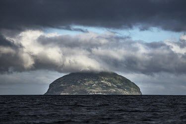 Ailsa Craig off the west coast of Scotland is home to 36 000 pairs of Northern gannets island,habitat,colony,seabird,seabirds,bird,birds,cloudy,grey sky,landscape,seascape,Scotland,Firth of Clyde