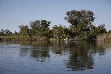 A boat cruising along the banks of the Okavango river ecosystem,habitat,environment,river,water,freshwater,rivers,Africa,blue sky,wetlands,wetland,Okavango