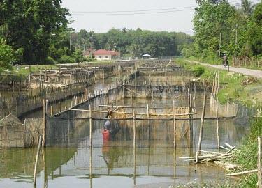 Fish farming aquaculture,fish farm,fish farming,farming,farm,coast,coastal,farmer,industry,food,food production,fence,net,ecosystem,human impact,people