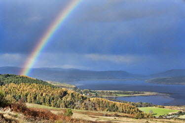 Rainbow shining over the Dornoch firth, Scotland Scotland,river,landscape,habitat,freshwater,forest,woodland,trees,tree,autumn,sunlight,leaves,seasons,firth,waterbody,rainbow,colours,grey sky,rain,rainy,colourful,coastal,beauty in nature,idyllic,tra