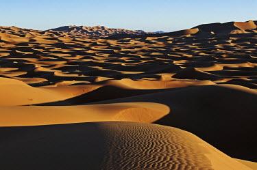 Scenic view of sand dunes in the Erg Chebbi area, Sahara desert ecosystem,habitat,environment,landscape,Morocco,Africa,sand,sand dunes,dunes,desert,shadows,shade,arid,dry